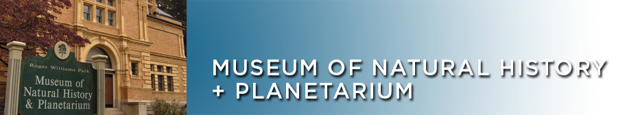 ~Museum of Natural History and Planetarium | Homeschool Adventures